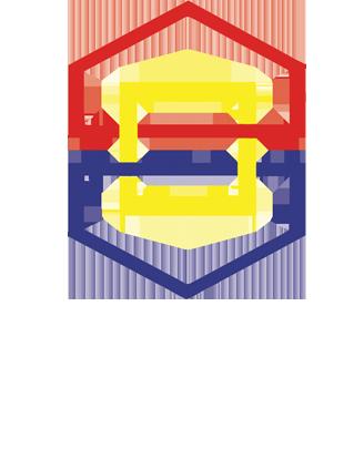 Sociedade Brasileira de Angiologia e Cirurgia Vascular.